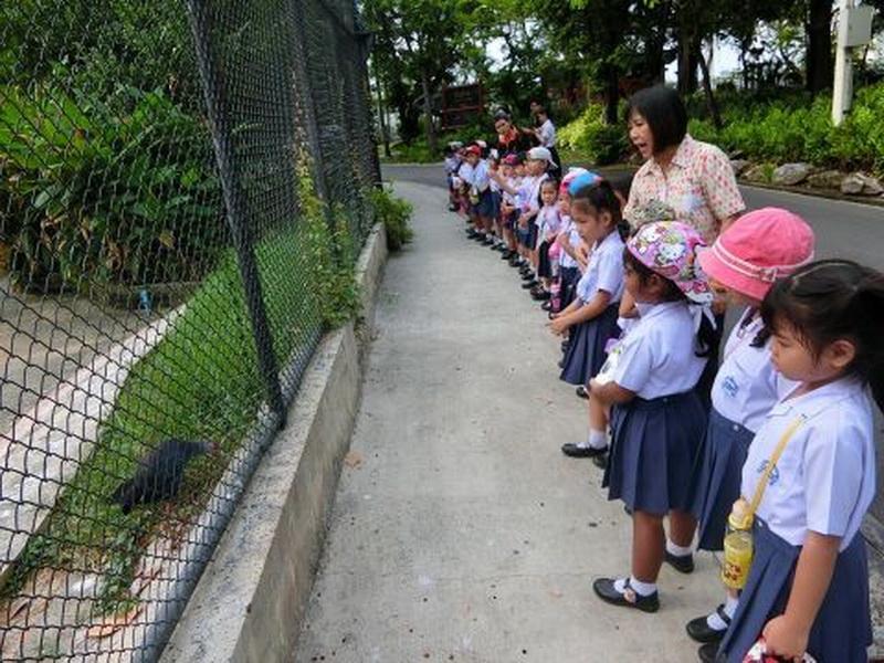 ทัศนศึกษาสวนสัตว์ดุสิต ชั้นปฐมวัยปีที่ 2